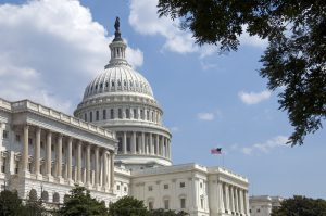 Tips for government jobs and federal hiring